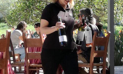 wine tour crete